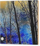 Moonlit Frosty Limbs Wood Print