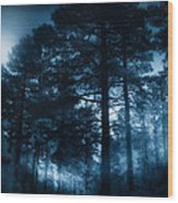 Moonlit Night Wood Print