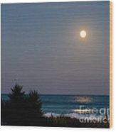 Moonlit Stroll Wood Print