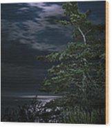 Moonlit Treescape Wood Print