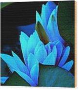 Moonlit Waterlilies Wood Print