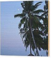 Moonrise In Maldives Wood Print by Corinne Rhode