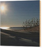Moonrise Over The Dunes Wood Print by JC Findley