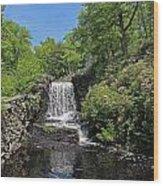 Moore State Park Waterfall 3 Wood Print