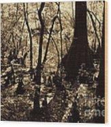 Moores Creek Swamp Wood Print