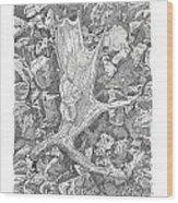 Moose Antler Shed Wood Print by Kenneth or Susan Posselt