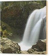 Moose Falls Wood Print