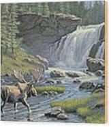 Moose Falls Wood Print by Paul Krapf