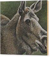 Moose II Wood Print