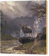 Moose In The Adirondacks Wood Print