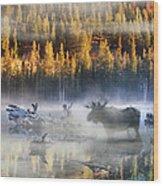 Moose Lake Wood Print