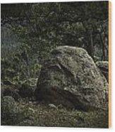 Moraine Park Wood Print