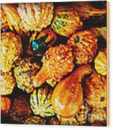 More Beautiful Gourds - Heralds Of Fall Wood Print