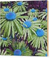 More Than Miles Purple Green Blue Wood Print