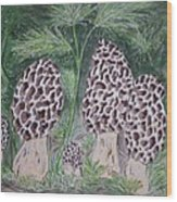 Morel Mushrooms Wood Print