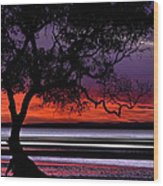 Moreton Bay View Wood Print