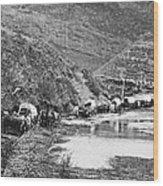 Mormon Emigrant Conestoga Caravan 1879 - To Utah Wood Print