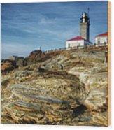 Morning At Beavertail Lighthouse Wood Print