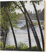 Morning At Idaho Falls Wood Print