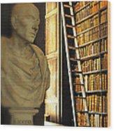 Dublin - Morning At The Library Wood Print
