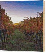 Morning At The Vineyard Wood Print