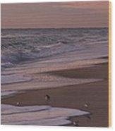 Morning Birds At The Beach Wood Print