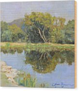 Morning Calm In Texas Summer Wood Print