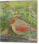 Morning Cardinal Wood Print