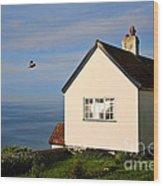 Morning Cottage At Lyme Regis Wood Print