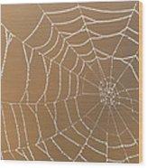 Morning Dew On Web Wood Print