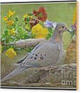 Morning Dove With Pansies Wood Print