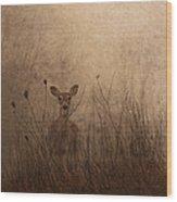Morning Encounters Wood Print
