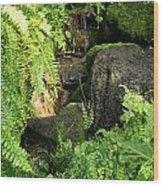 Morning Ferns Wood Print