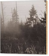 Morning Fog In The Smoky Mountains Wood Print