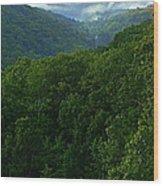 Morning Fog On Blue Ridge Wood Print