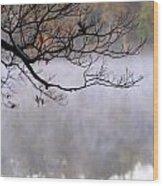 Morning Fog Over Lake Wood Print