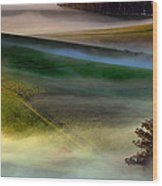 Morning Fog Over Two Rock Valley Diptych Wood Print