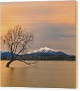 Morning Glow Of The Lake Wanaka Wood Print