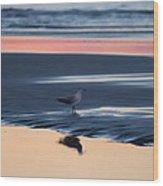 Morning Gull Wood Print