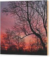 Morning Has Broken Wood Print