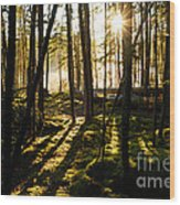 Morning In Canoe Country Wood Print