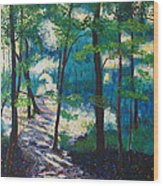 Morning Sunshine In Park Forest Wood Print