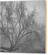Morning In The Fog. M Wood Print