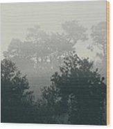 Morning Mist 1 Wood Print