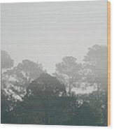 Morning Mist 4 Wood Print