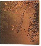 Morning Mist-blue Ridge Parkway Wood Print