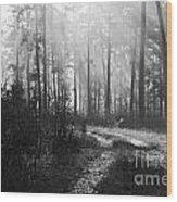 Morning Mist In Monochrome Wood Print