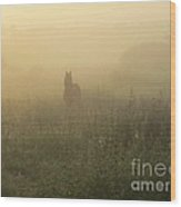 Morning Mist In The Meadow Wood Print