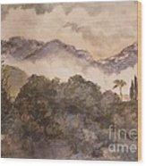 Morning Mist Pasadena Wood Print