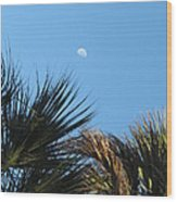 Morning Moon Over Palms Wood Print